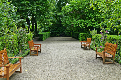 Poster Garden Benches in the park surrounded by trees,peaceful place