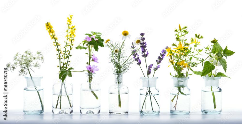 Fototapety, obrazy: Alternative Medicine  -  Various Herbs