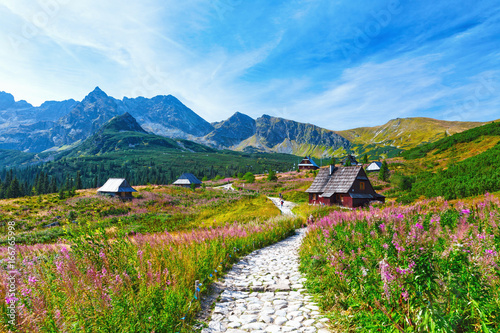 Fototapety, obrazy: Gasienicowa Valley in Tatry mountains, Poland
