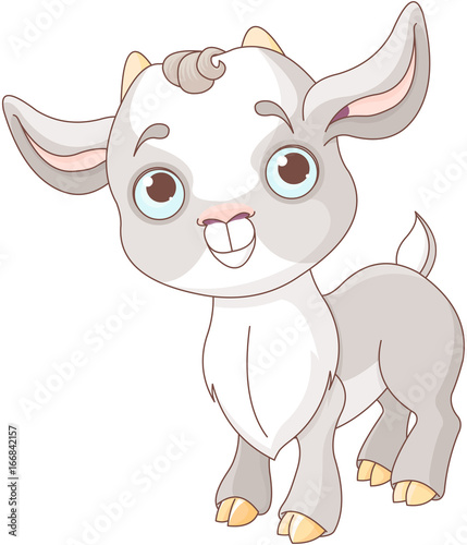Canvas Prints Fairytale World Baby Goat