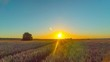 Wheat field and sunset, time-lapse with crane