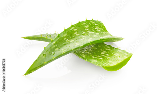 Aloe vera leaves with drops of water Wallpaper Mural
