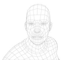 Wire Frame Mans Head