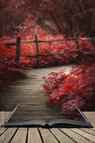 Tuinposter Chocoladebruin Beautiful surreal red landscape image of wooden boardwalk throughforest in Spring concept coming out of pages in open book