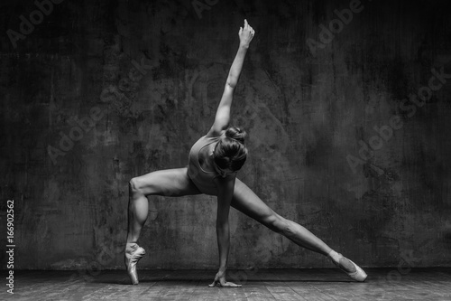 Stampa su Tela Young beautiful dancer is posing in studio