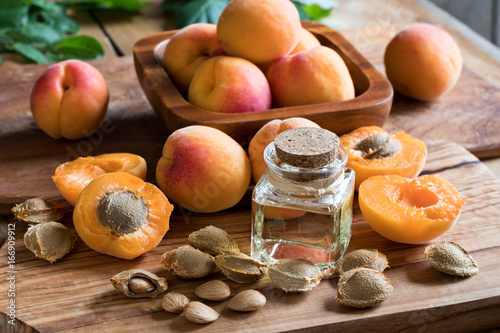 Photo A bottle of apricot kernel oil with apricot kernels and apricots