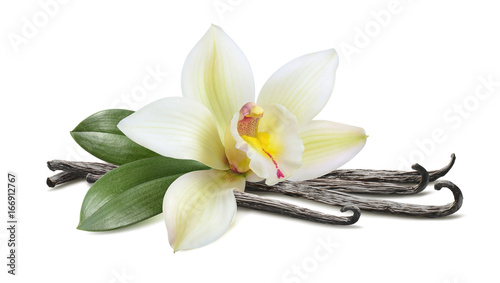 Stickers pour porte Orchidée Vanilla with leaves horizontal pod isolated on white