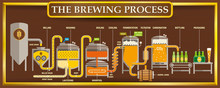 The Brewing Process Info-graph...