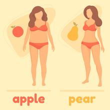 Obesity Woman Body Type, Apple...