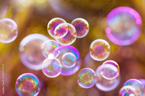 Fotografía  The Dreamy Abstract background from soap bubble in the air with nature defocused