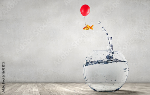 Fotografie, Obraz Goldfish jumping from aquarium