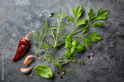 Selectionof herbs and spices on stone background Canvas Print