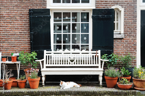 Photo  Amsterdam, Holland, Europe - a building facade, a window, a white bench and a ca