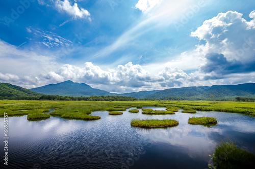 Valokuvatapetti 尾瀬・真夏の湿原