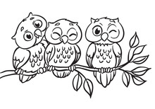 Three Owls Are Sitting On A Br...