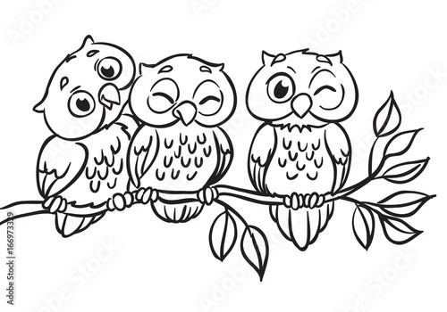 Photo Stands Owls cartoon Three owls are sitting on a branch. Outlined for coloring book.