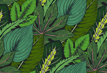 Fototapeta Do Spa Vector seamless pattern with compositions of hand drawn tropical plants