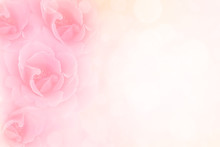 Soft Pink Roses Flower Vintage...