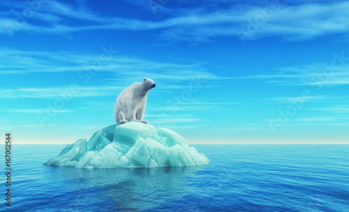 Photo Stands Turquoise A polar bear