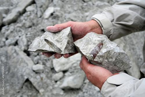 belemnite fossil in chalk rock quarry.