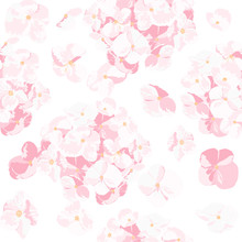 The Pink Hydrangea In The Sky. Pink Flower Is Vector For Seamless, Pattern And Background.