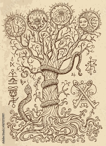 Mystic drawing with spiritual and christian religious symbols as snake, tree of Fototapeta
