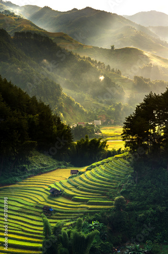 Fotobehang Rijstvelden Top view of Rice terraced fields on Mu Cang Chai District, YenBai province, Northwest Vietnam