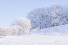 Winterland Skåne