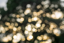 Bokeh Out Of Focus Lights For Wallpaper Ro Graphic Purposes
