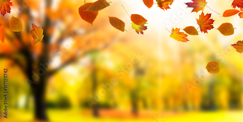 Photo Stands Melon colorful blurred autumn background