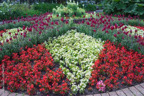 Deurstickers Groene Flowers in a garden in Cornwall at summertime