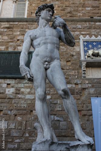 Fotografía  The statue of David by Michelangelo on the Piazza della Signoria in Florence, It