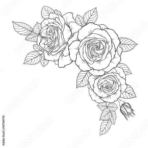 beautiful black and white bouquet rose and leaves. Floral arrangement isolated on background. design greeting card and invitation of the wedding, birthday, Valentine s Day, mother s day, holiday