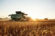 Leinwandbild Motiv Mähdrescher bei der Ernte auf dem Weizenfeld