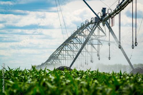 Cuadros en Lienzo  An irrigation pivot watering a field