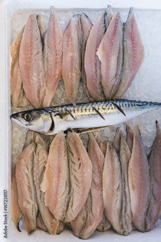 Crate with whole fresh mackerel and fillets on ice