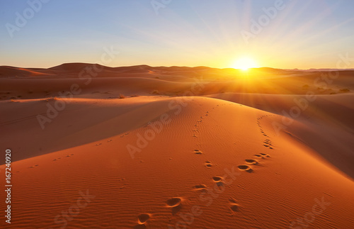Keuken foto achterwand Rood traf. Beautiful sand dunes in the desert