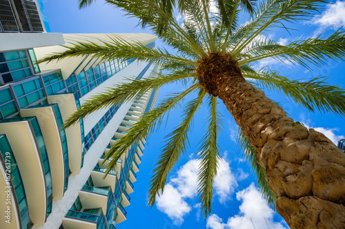 Zdjęcie XXL Downtown Miami