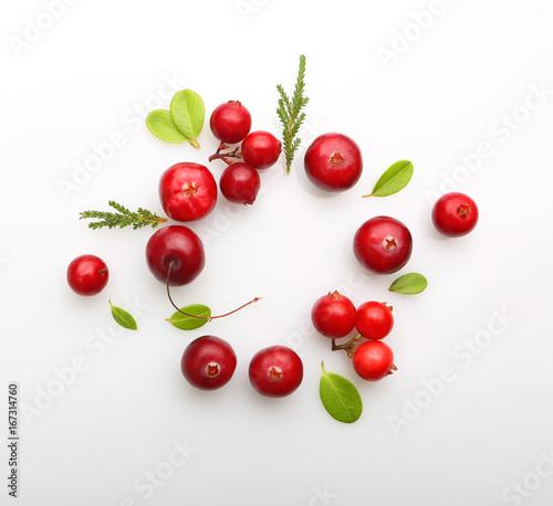 Fresh forest berry cranberry Slika na platnu
