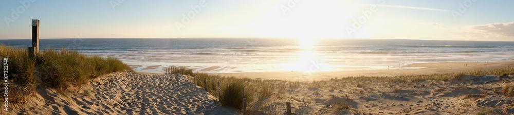 Fototapety, obrazy: coucher de soleil dans la forêt pres de la dune de plage