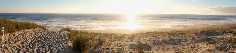 Fototapeta coucher de soleil dans la forêt pres de la dune de plage