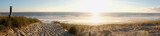 Fototapeta Fototapety z morzem - coucher de soleil dans la forêt pres de la dune de plage