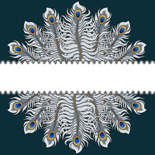 Postcard With Silver Peacock Feathers And Ribbon. Vector Illustration With Place For Inscription.