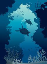 Underwater Cave, Sea, Turtles, Coral Reef, Fishes.
