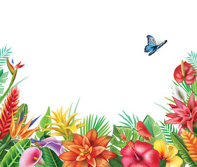 Panel Szklany Egzotyczne Frame from tropical flowers
