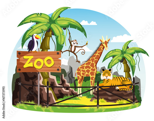 Giraffe and monkey, tiger and toucan at zoo