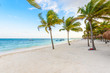 Beautiful white sand beach in Akumal, Mexico - paradise bay Beach in Quintana Roo - caribbean coast - late afternoon and sunset at Riviera Maya
