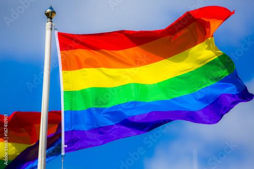 Rainbow Flag Canvas Print