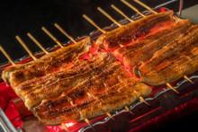 最高級日本産鰻の蒲焼...