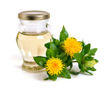 Safflower Plant With Oil In Th...